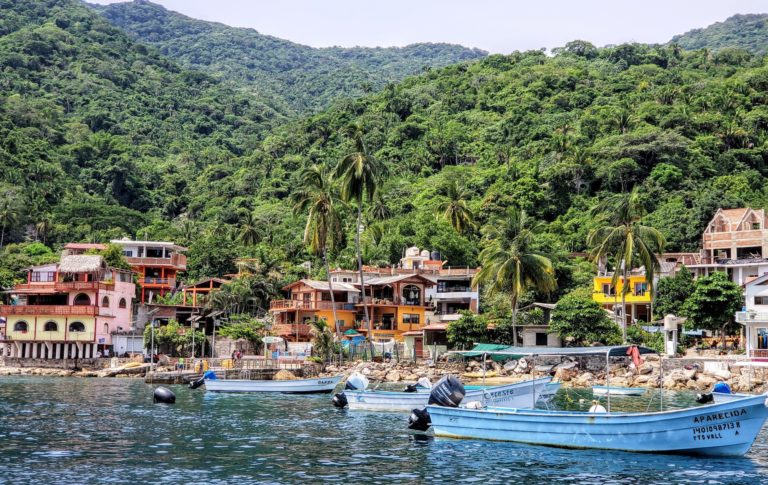 Puerto Vallarta Larry Grossman