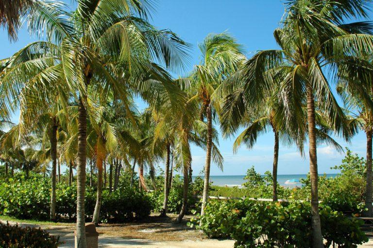 Key West Inspiring Experiences